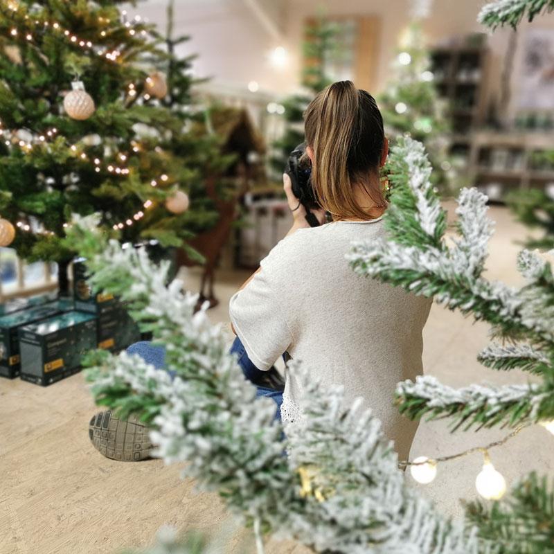 Agenturalltag: Fotoshooting zwischen den Weihnachtsbäumen